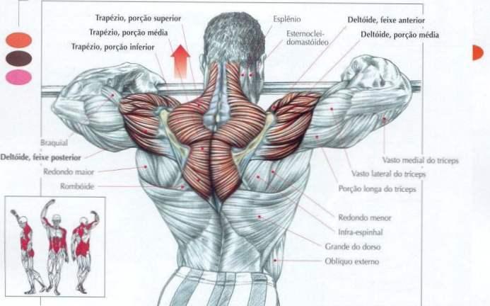 Toți mușchii și articulațiile doare ce este - Dacă toți mușchii și articulațiile doare